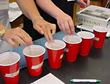 AP Biology: Lab 1: Diffusion and Osmosis | AP Central – The ...