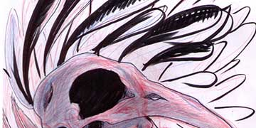Bryanna Aguilar, Media Arts Collaborative Charter School, Albuquerque, N.M.
