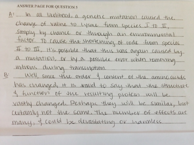 Essay On Pollution Due To Urbanisation